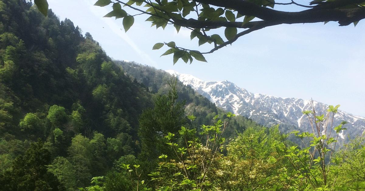 全国植樹祭2017富山