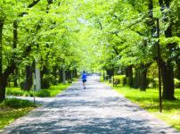 【いっちゃんリレーマラソン2019】日程やゲスト、コースやシャトルバス情報など
