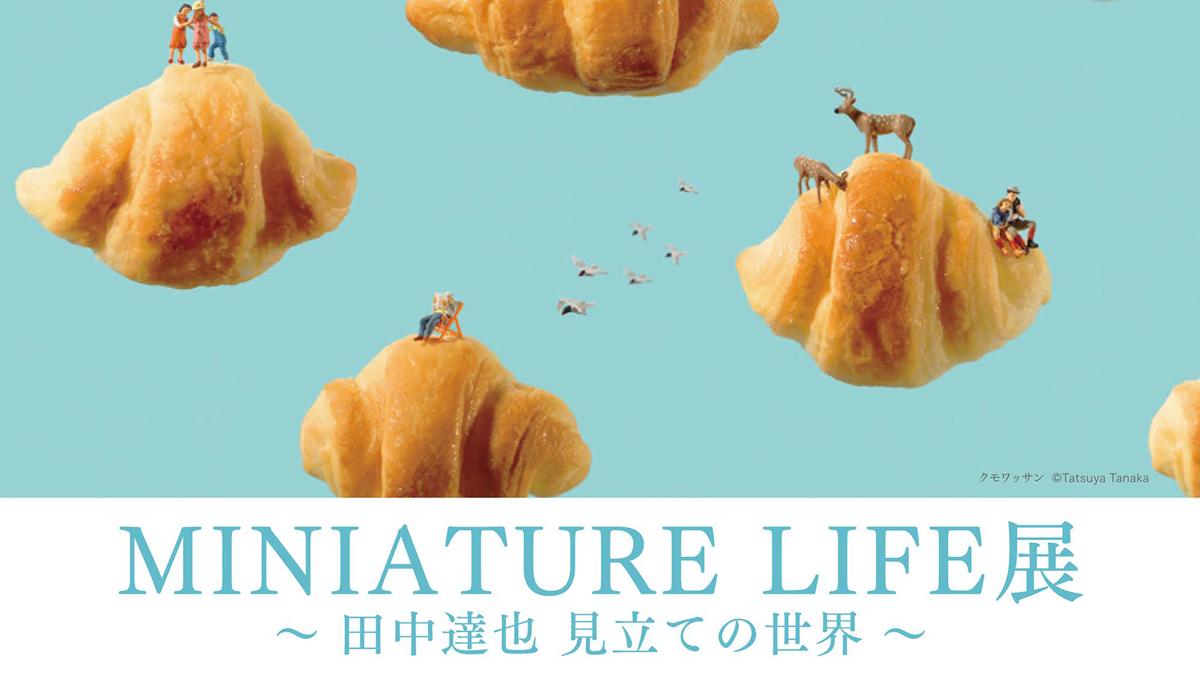 富山大和で田中達也氏のMINIATURE LIFE展(ミニチュアライフ展)