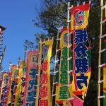 【夏巡業 大相撲魚津場所2018】富山で朝乃山の取り組みを見るチャンス!