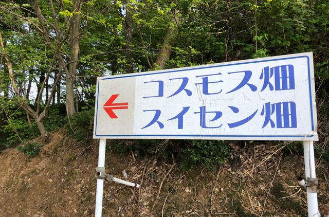 砺波市夢の平スキー場第4駐車場にある「コスモス畑」「スイセン畑」看板