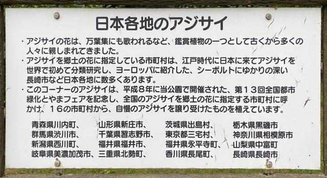 太閤山ランドの日本各地のあじさい