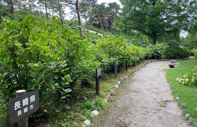 太閤山ランドの日本各地のあじさい実物
