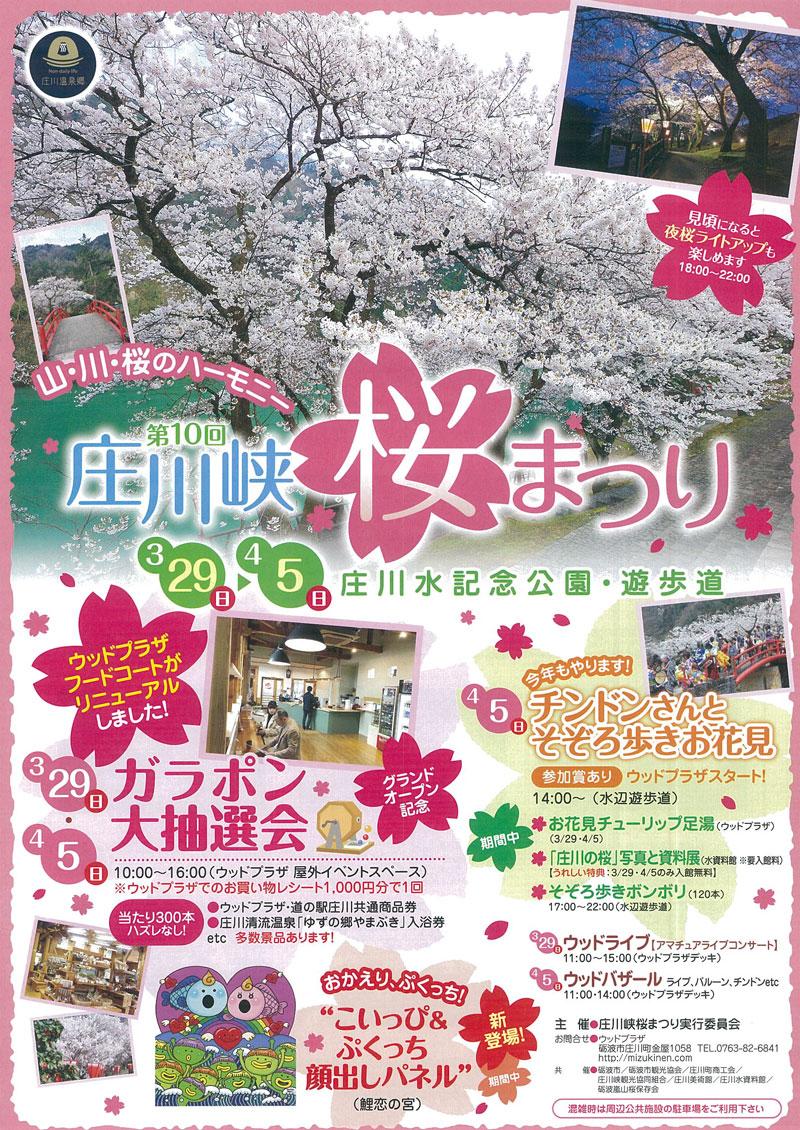 【第10回 庄川峡桜まつり2020】お花見イベントや夜桜ライトアップで桜満喫☆