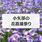 【小矢部市の花菖蒲祭り2019】金魚掴み取りに太鼓、街コス&痛車など企画満載!