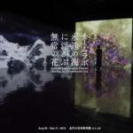 【teamLabチームラボ@金沢21世紀美術館】開催日やお得チケット、駐車場など!
