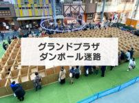 【段ボール迷路】総曲輪グランドプラザに無料の段ボール迷路が今年も登場!