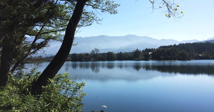 秋のネオセンチュリーランinとやま2016_5
