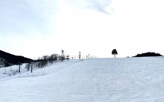 富山市の牛岳温泉スキー場のメインゲレンデ