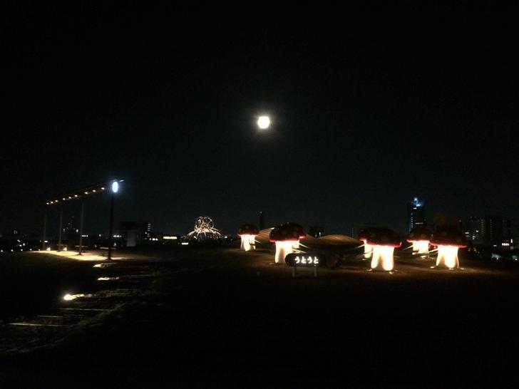 夜の富山県美術館オノマトペの屋上のうとうと