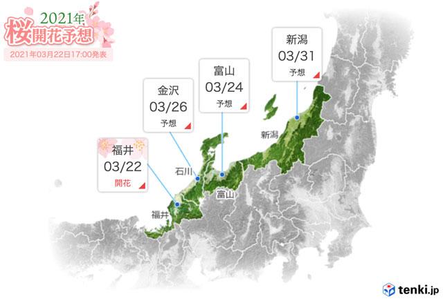 北陸地方の桜の予想開花日と予想満開日2021(tenki.jp)