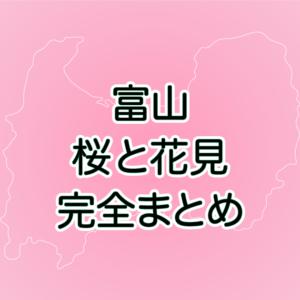 【富山の桜まとめ】花見の名所や開花予想など、おすすめスポット紹介!