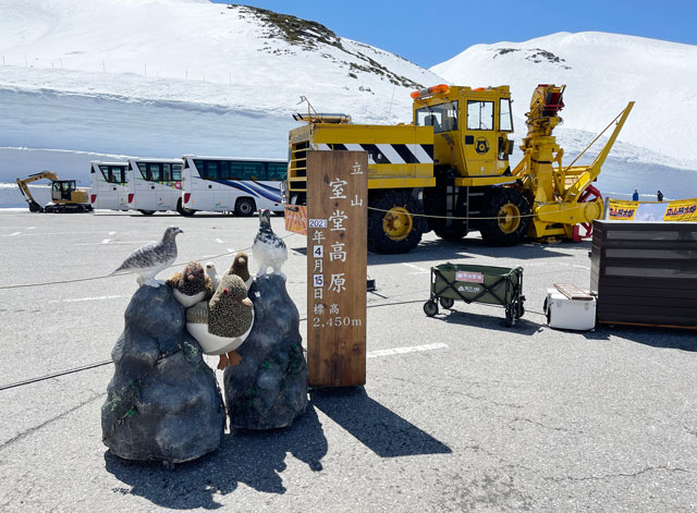 立山黒部アルペンルート「雪の大谷」エントランスゾーンの記念撮影