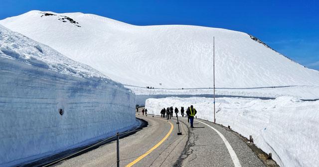立山黒部アルペンルート「雪の大谷」メモリアルウォーク