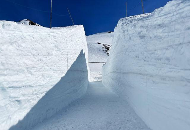 立山黒部アルペンルート「雪の大谷」の雪の回廊