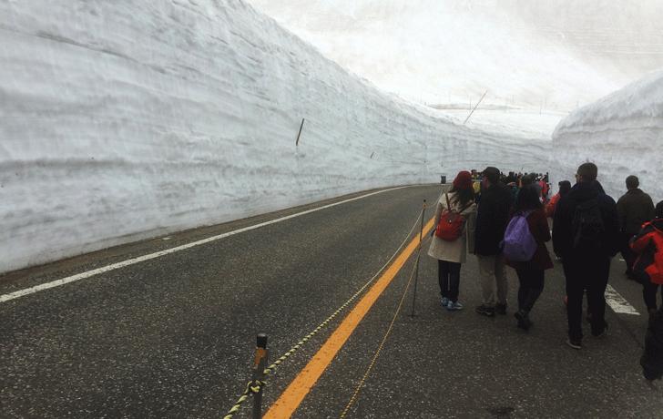 雪の大谷は外人だらけ