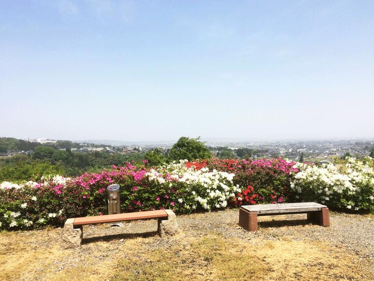 八尾の城ヶ山からの眺め
