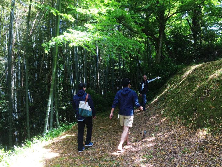 八尾の城ヶ山でタケノコ掘り