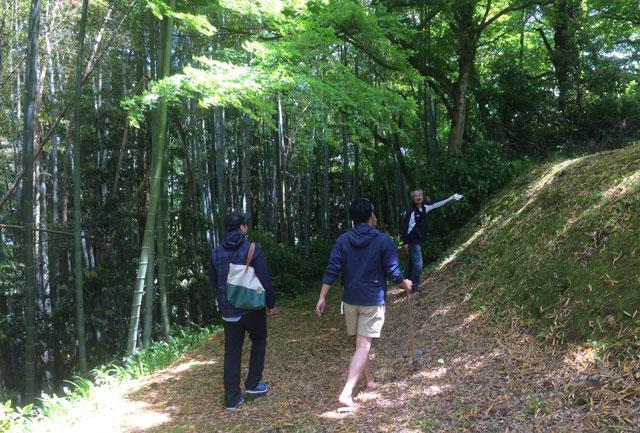 越中八尾の城ヶ山でタケノコ掘り