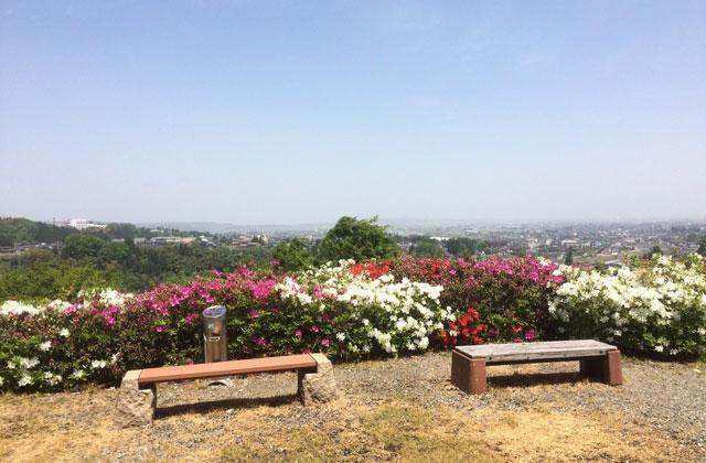 越中八尾の城ヶ山からの眺め