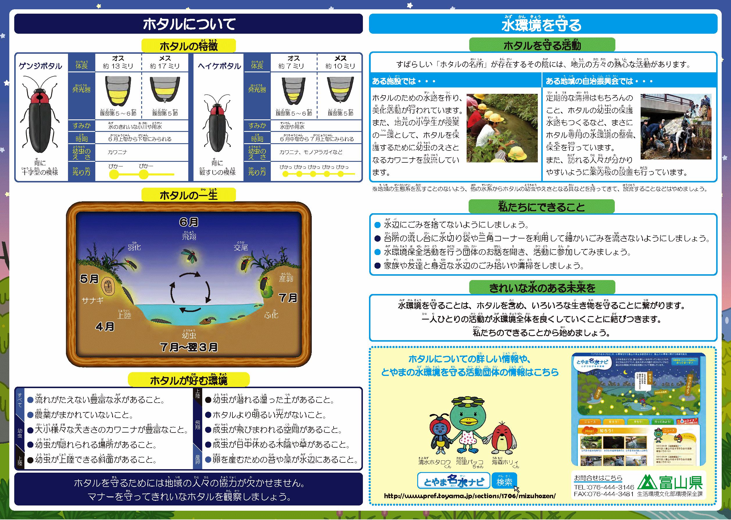 富山県のホタルマップ!ホタルの生態と鑑賞の注意点
