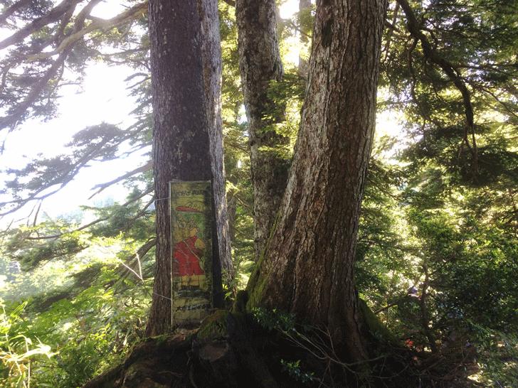 富山県の百名山薬師岳のアラレちゃんの落書き