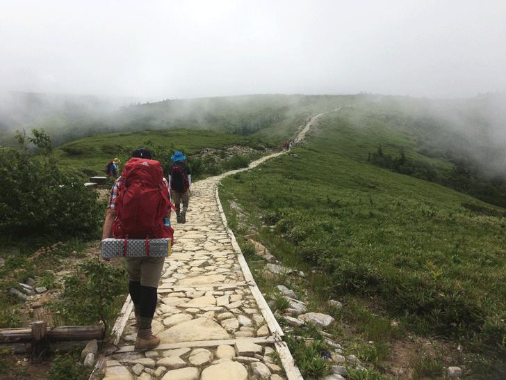 富山県の百名山薬師岳の石ただみの登り