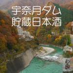 宇奈月ダムで貯蔵した日本酒