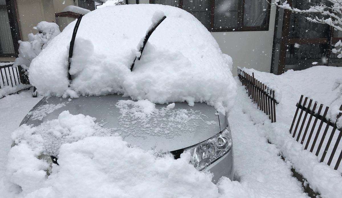 朝は車掘り!冬の富山の朝のルーティン。雪国は大変だ...