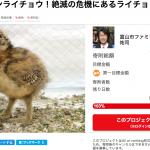 ファミリーパークが雷鳥を救うクラウドファンディングで1000万達成!