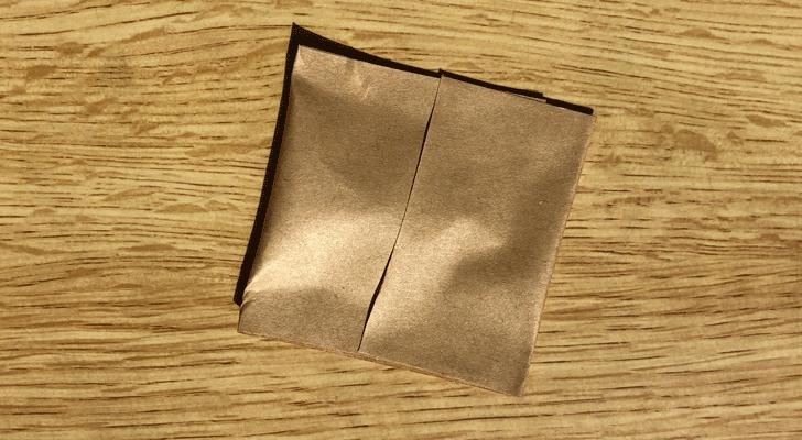 カメムシをガムテープで包んだところ