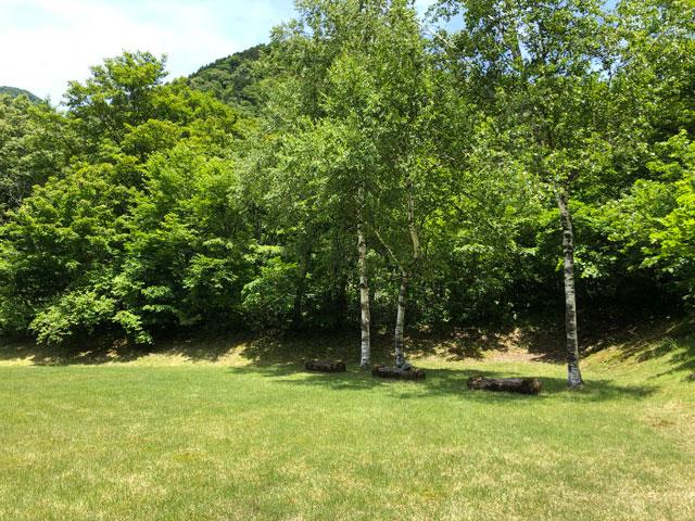 上市町番場島野営場の芝生広場と木陰
