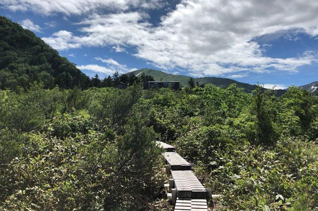 大日平の綺麗な湿地帯の木道の先に見える大日平山荘