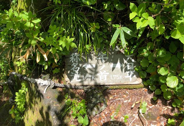 称名滝→牛ノ首→大日平の看板