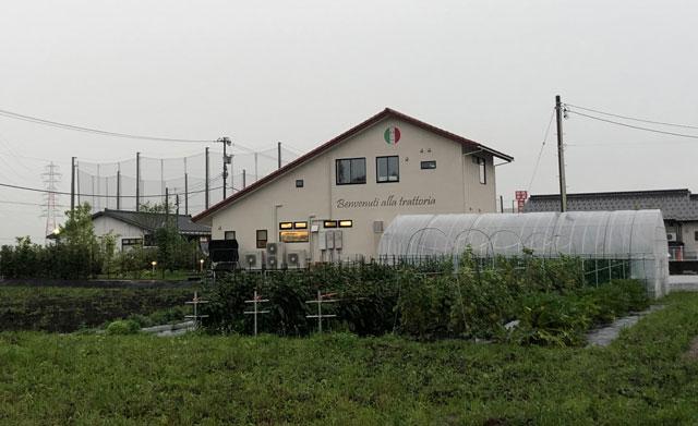 イタリア料理屋「TRATTORIA SACCHI(トラットリア サッチ)」の裏の野菜畑