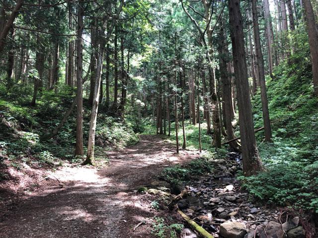 尖山(とんがり山)の緩い本道コースの登り口