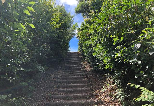 尖山(とんがり山)夏椿峠登山コースのゴール目前