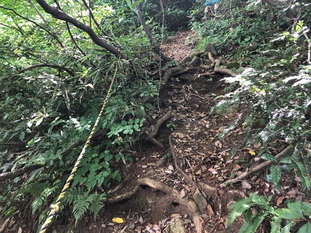 尖山(とんがり山)夏椿峠コースの急登