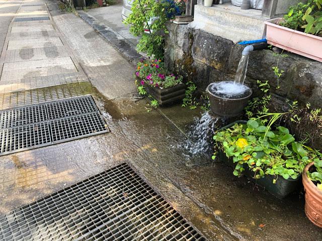 尖山(とんがり山)の途中の湧き水