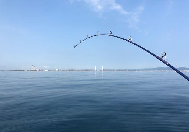 鯛カブラ釣り初ヒット!