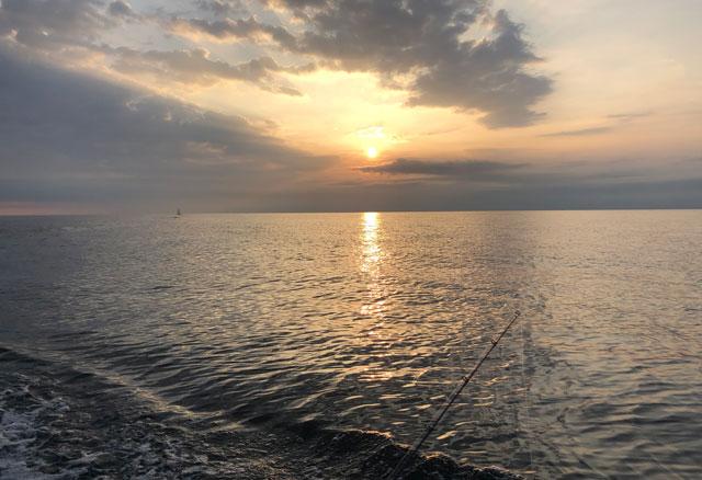 チャーター船の鯛カブラの釣り開始