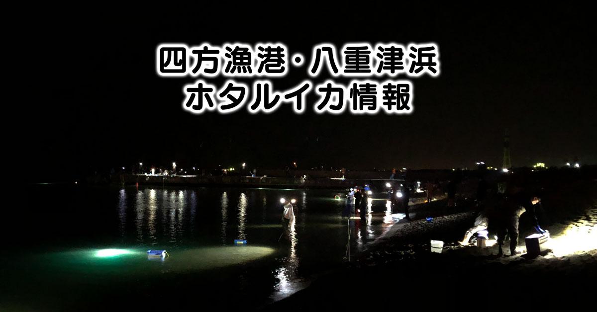 【四方漁港・八重津浜のホタルイカ身投げ情報 】駐車場や混み具合などまとめ!