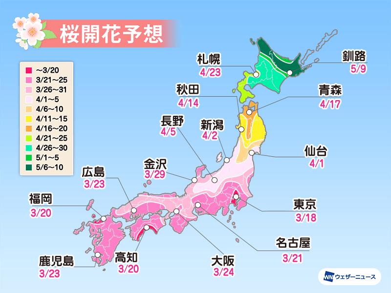 日本全国の桜の予想開花日と予想満開日2021(ウェザーニュース)