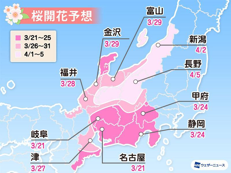 日本中部地方の桜の予想開花日と予想満開日2021(ウェザーニュース)