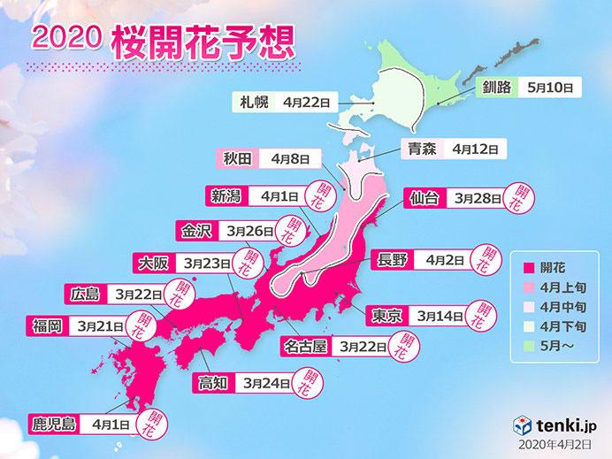 桜の予想開花日と予想満開日2020(改定)
