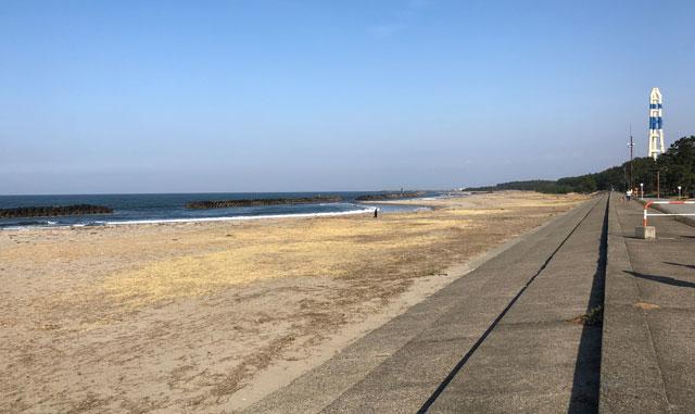 八重津浜の広い砂浜