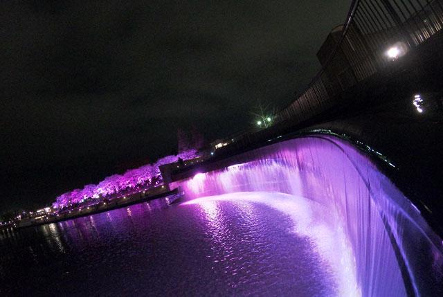 富岩運河環水公園のピンク色の夜桜ライトアップと滝