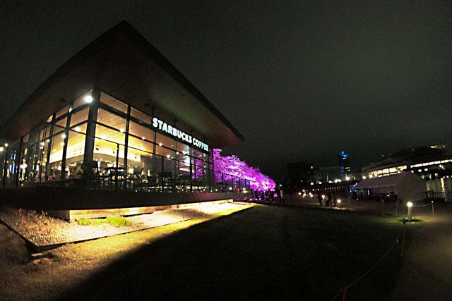 富岩運河環水公園のスターバックスと夜桜ライトアップ