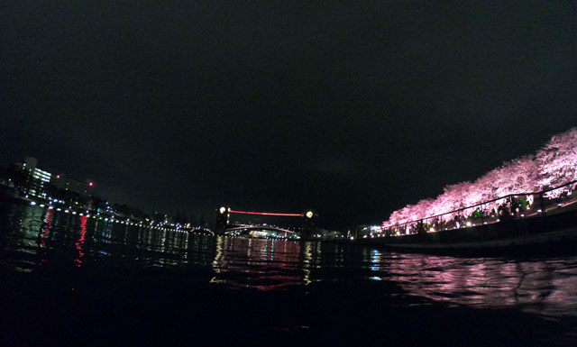 富岩運河環水公園の夜桜ライトアップと天門橋(見上げ)