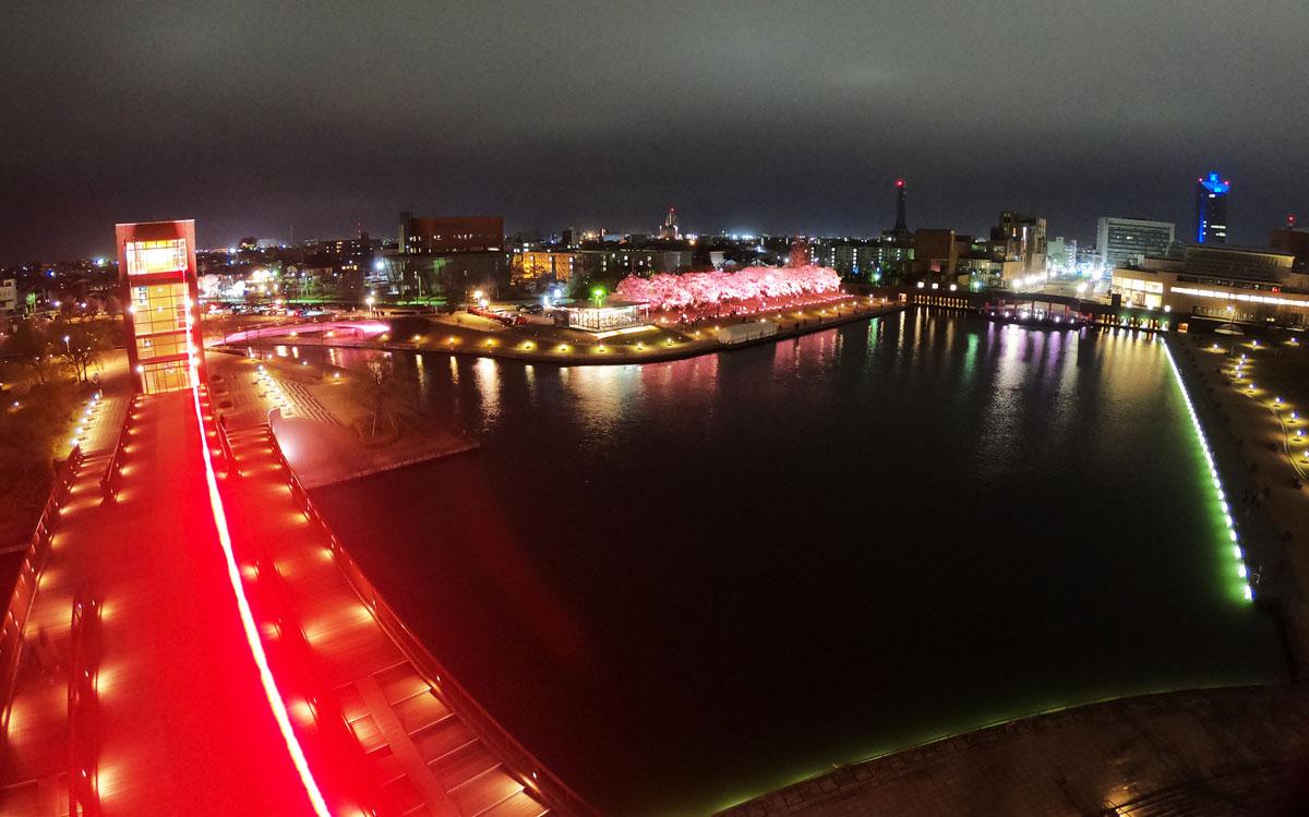 【環水公園の夜桜ライトアップ】ロマンチックな花見デート!イルミネーションと夜景も